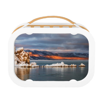 USA, California, Sunrise at Mono Lake Lunch Box