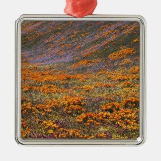 USA, California, Tehachapi Mountains, 2 Christmas Ornament