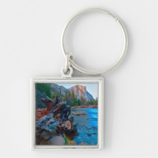 USA, California. Tree Roots In Merced River Key Ring