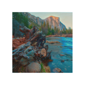 USA, California. Tree Roots In Merced River Wood Print