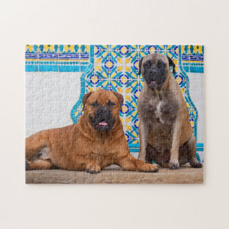 USA, California. Two Mastiffs Looking At You Jigsaw Puzzle