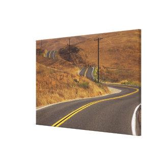 USA, California. Winding country road. Credit Canvas Print