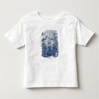USA, California, Yosemite National Park, 2 Toddler T-Shirt