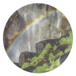 USA, California, Yosemite National Park. A Plate