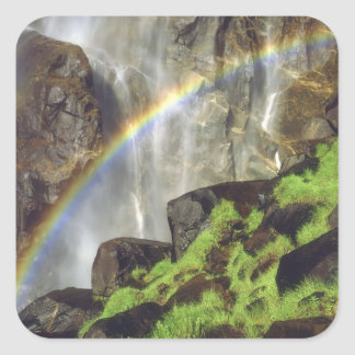 USA, California, Yosemite National Park. A Square Sticker