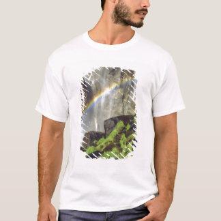 USA, California, Yosemite National Park. A T-Shirt