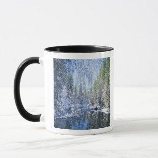 USA, California, Yosemite National Park, Mug