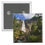 USA, California, Yosemite National Park, Nevada Pins