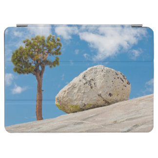 USA, California, Yosemite National Park. Pine iPad Air Cover
