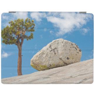USA, California, Yosemite National Park. Pine iPad Cover
