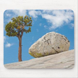USA, California, Yosemite National Park. Pine Mouse Pad