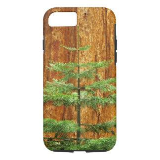 USA, California, Yosemite National Park. Young iPhone 8/7 Case