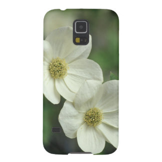 USA, California, Yosemite NP, along Merced Galaxy S5 Cover
