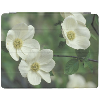USA, California, Yosemite NP, along Merced iPad Cover