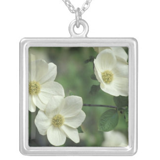 USA, California, Yosemite NP, along Merced Silver Plated Necklace