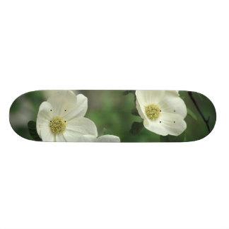USA, California, Yosemite NP, along Merced Skate Board Decks