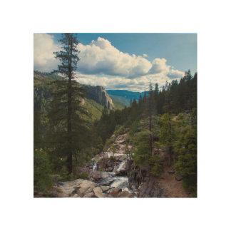 USA, California. Yosemite Valley Vista Wood Prints