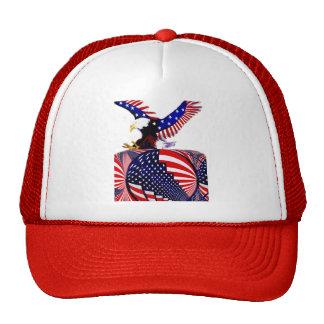 USA Changeing Times_ Cap