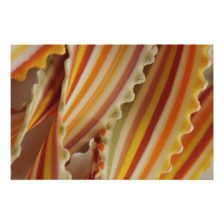 USA Close-up of dried rainbow pasta noodles Print