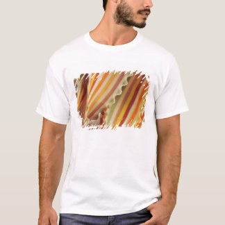 USA. Close-up of dried rainbow pasta noodles. T-Shirt
