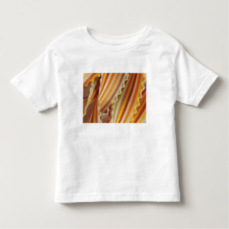USA. Close-up of dried rainbow pasta noodles. Toddler T-Shirt