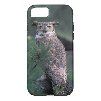 USA, CO, Colorado Springs. Great Horned Owl in iPhone 8/7 Case
