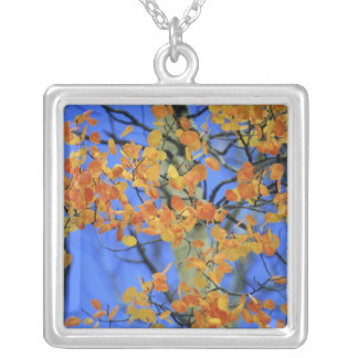 USA, Colorado. Aspen leaves that have taken Silver Plated Necklace