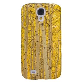 USA, Colorado. Aspens In Gunnison National Galaxy S4 Case