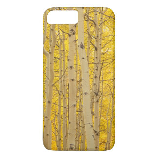 USA, Colorado. Aspens In Gunnison National iPhone 8 Plus/7 Plus Case