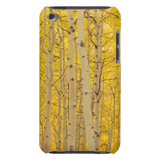 USA, Colorado. Aspens In Gunnison National iPod Touch Cover