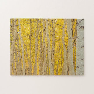 USA, Colorado. Aspens In Gunnison National Jigsaw Puzzle
