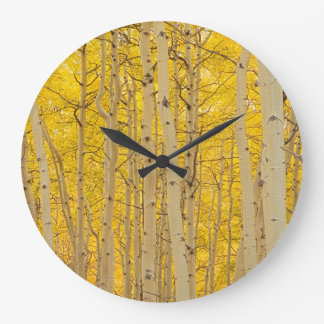 USA, Colorado. Aspens In Gunnison National Large Clock