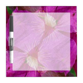 USA, Colorado, Boulder. Clematis flower montage Dry-Erase Whiteboards