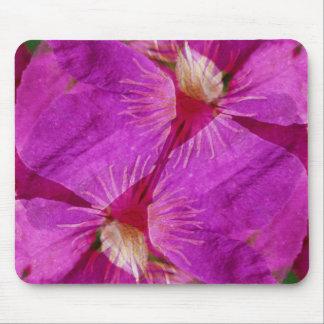 USA, Colorado, Boulder. Clematis flower montage Mouse Pad