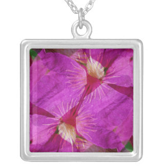 USA, Colorado, Boulder. Clematis flower montage Silver Plated Necklace