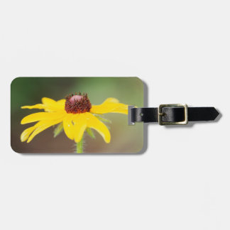 USA, Colorado, Boulder. Sunflower close-up Bag Tag