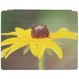 USA, Colorado, Boulder. Sunflower close-up iPad Cover