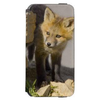 USA, Colorado, Breckenridge. Curious young red Incipio Watson™ iPhone 6 Wallet Case