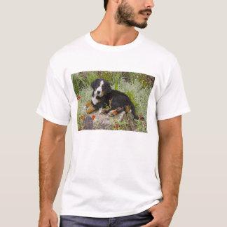 USA, Colorado, Breckenridge. Female Bernese T-Shirt