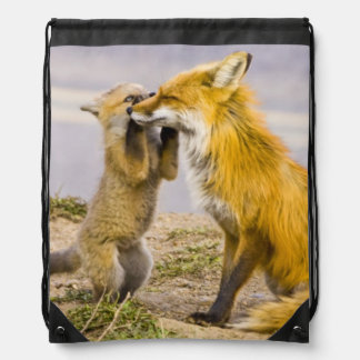 USA, Colorado, Breckenridge. Red fox mother 2 Drawstring Bag