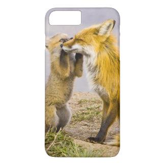 USA, Colorado, Breckenridge. Red fox mother 2 iPhone 8 Plus/7 Plus Case