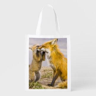 USA, Colorado, Breckenridge. Red fox mother 2 Reusable Grocery Bag