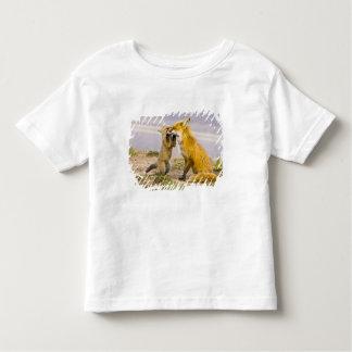 USA, Colorado, Breckenridge. Red fox mother 2 Toddler T-Shirt