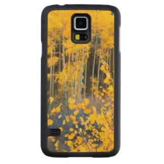 USA, Colorado. Bright Yellow Aspens In Rockies 2 Carved Maple Galaxy S5 Case