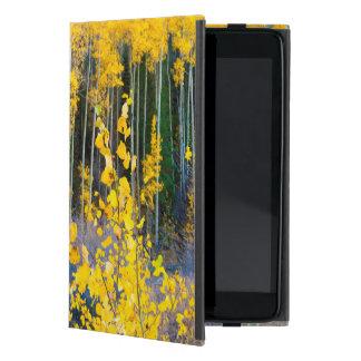 USA, Colorado. Bright Yellow Aspens In Rockies 2 Cover For iPad Mini