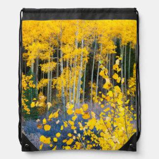 USA, Colorado. Bright Yellow Aspens In Rockies 2 Drawstring Bag