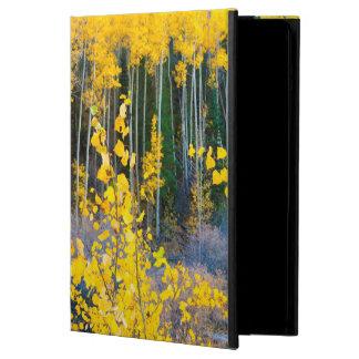 USA, Colorado. Bright Yellow Aspens In Rockies 2 iPad Air Case