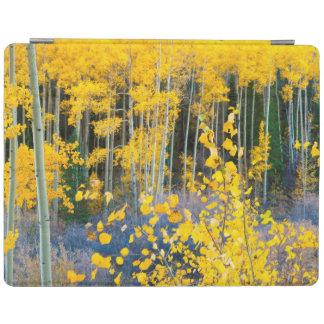 USA, Colorado. Bright Yellow Aspens In Rockies 2 iPad Cover