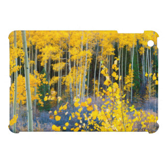 USA, Colorado. Bright Yellow Aspens In Rockies 2 iPad Mini Case