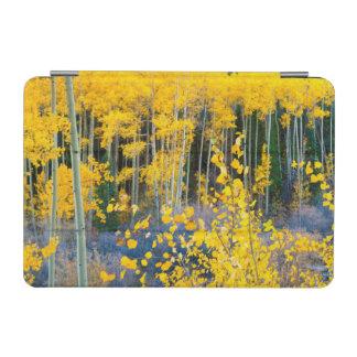 USA, Colorado. Bright Yellow Aspens In Rockies 2 iPad Mini Cover